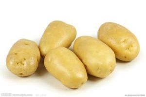 Fresh Potato From China pictures & photos