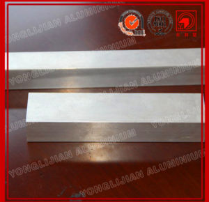 Untreated Aluminum Profiles 6063 Natural Color pictures & photos