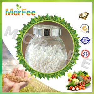 Hot Selling High Quality Sulfate Fertilizers with Favorable Price