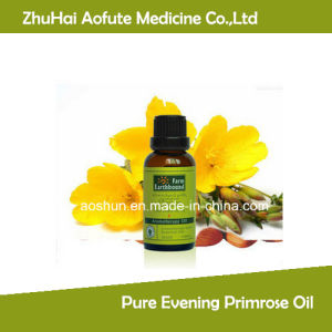 QS Fty 100% Pure Evening Primrose Oil Rich in High Gla Directly Supply pictures & photos