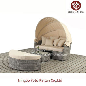 New Lounge Set for Outdoor / Living Room with Alu Pipe / PE Rattan / SGS (415-2)
