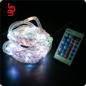 huge discount b9cb0 99bf5 China Remote Control Silk Tube Colorful String Light, Home ...