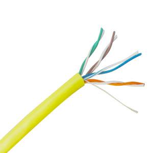 CAT5e UTP Ethernet RJ45 Patch Cable Intellinet 100 Ft