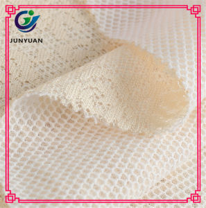 Cheap Spring&Summer Lace Fabric for Garment pictures & photos
