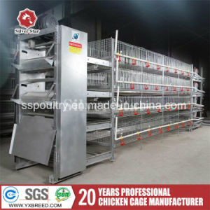 Low Price Poultry Farms Equipment Chicken Feeding Cage with Drinker pictures & photos