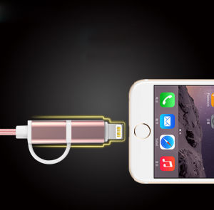 2 in 1 Aluminum Shell USB Charging and Data Cable Data for iPhone, Samsung Phone pictures & photos