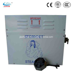 Steam Engine Steam Room Generator Steam Boilers for SPA