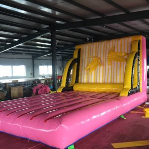 PVC Inflatable Combo Jumping Bouncer Castle pictures & photos