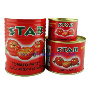 Star Brand Canned Tomato Paste- High Quality and Low Price pictures & photos