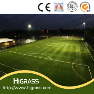 Practical Artificial Grass for Education Floor Mats pictures & photos