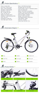 Electric Bicycle Tdf26z pictures & photos