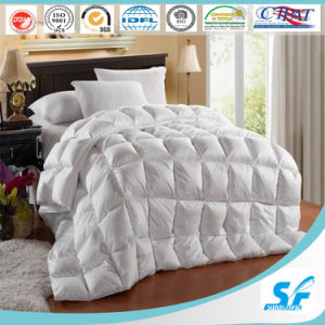 Beautiful 100% Cotton Bedding Set, Comforter Set for Sale pictures & photos