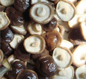 Best Quality Canned Shiitake Mushroom in Whole pictures & photos