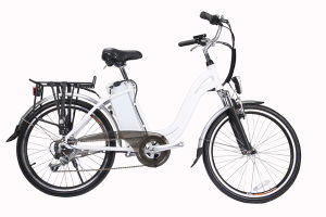 24 Inch Well-Seller Lithium Electric Bicycle (LN24C06)