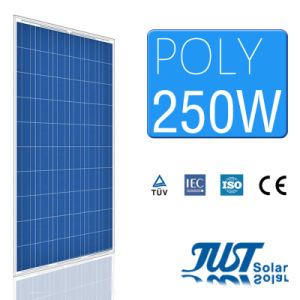250W Poly Solar Panels with Certificate of Ce, CQC and TUV