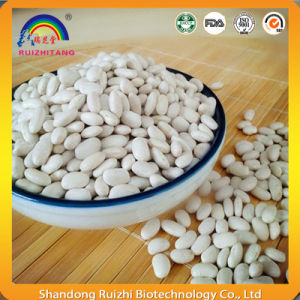 White Kidney Beans Extract with Phaseolin pictures & photos