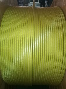 Autohension Double Polyester Fiber-Glass Film Wrapping Rectangular Copper Wire.