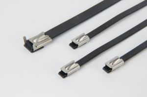 PVC Coated Selflocking Stainless Steel Cable Tie pictures & photos