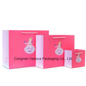 Cmyk Printed Packaging Paper Bag for Clothes/Gift/Cosmetics pictures & photos