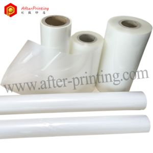 Pet Thermal Laminating Film with EVA Glue pictures & photos