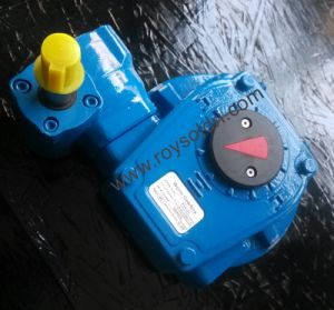 Rhw10V Worm Gearbox pictures & photos