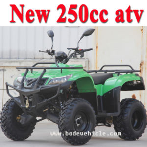 New Version 250cc Quad Bike pictures & photos