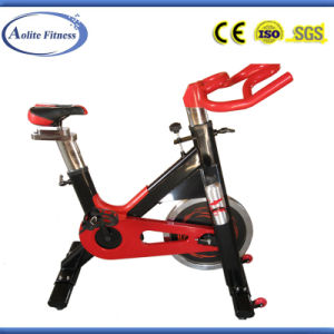 Low Price Gym Equipment Spinning Bike (8006B) pictures & photos