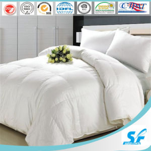Pure Cotton Comforter Duvet Cover Set pictures & photos
