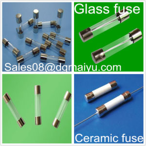 Ceramic Fuse 20 Years Experience on Fuse (Support custom made) Glass Fuse Standard Auto Fuse pictures & photos
