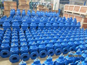 BS5163 Non-Rising Stem Resilient Soft Seated Gate Valve