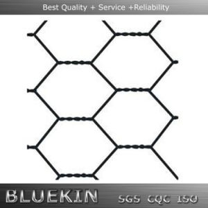 Hot Sale Galvanized Hexagonal Wire Netting