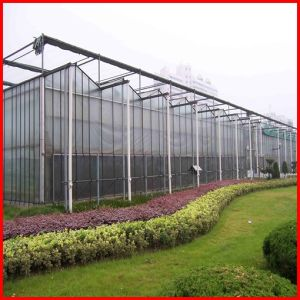 Hot Sale Multi-Span Commerical PC Sheet Garden Greenhouse for Sale pictures & photos
