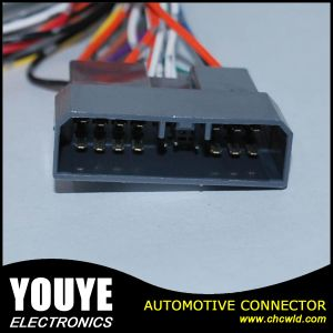 Avss Wire and 4 Pin Tyco Connector Automotive Wire Cable Harness pictures & photos