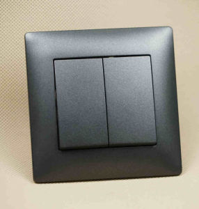 Ce/TUV Certified European Standard Frosted 2g 1W Switch pictures & photos