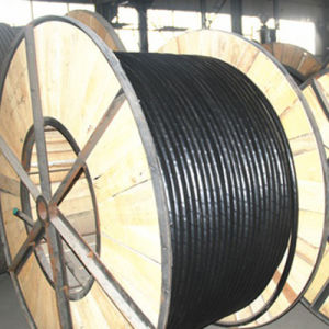 Secondary Urd Single XLPE Insulation Aluminum Conductor Underground Cable pictures & photos