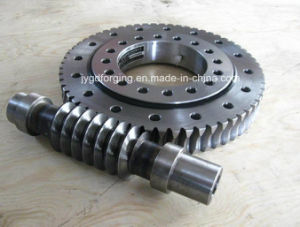 Forged F114 Sea1045 Steel Pinion and Spur Gear pictures & photos