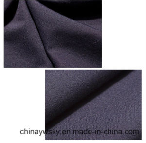 N/R/Spandex Rome Roma Rayon Knit Fabric pictures & photos