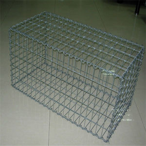 Gabion Mesh (China Supplier/ ISO/Manufacturer)