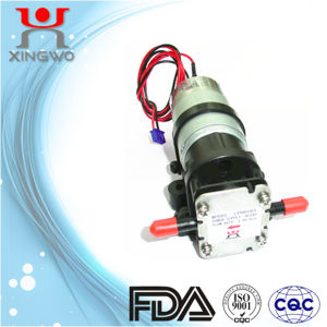 Small Gear Pump Water Pump Electric DC Food Grade (CP001B3)