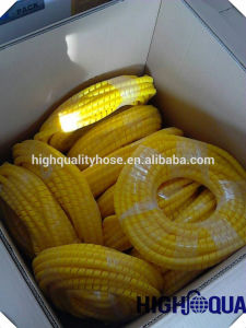 Plastic Hydraulic Hose Spring Guard / Hose Protector pictures & photos