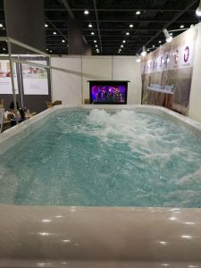 SPA and Sauna Factory Selling Mini Swim Pool M-3504 pictures & photos