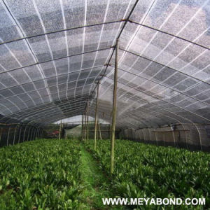 40/% Shading Sold by Length Width 4 m Sunscreen Net for Greenhouse
