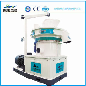 Large Scale Ring Die Vertical Dobule Sizes Grass Wood Sawdust Alfalfa Bamboo Pelletizer Machinery Price