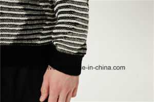 Special Pattern Round Neck Striped Knit Men Sweater pictures & photos