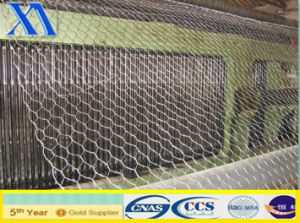 Durable Hexagonal Wire Mesh/Chicken Mesh pictures & photos