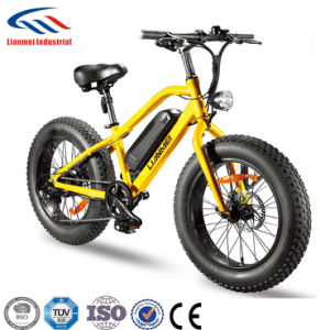 26inch Electric Mountain Bicylce 48vlithium Battery 500w Motor Smart Lcd Assist Bike Pas Ebike Aluminum Mountain Bike 50km Range Elegant In Smell Bicycle