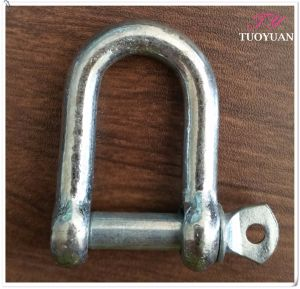 Galvanized European Type Large Dee Shackle pictures & photos
