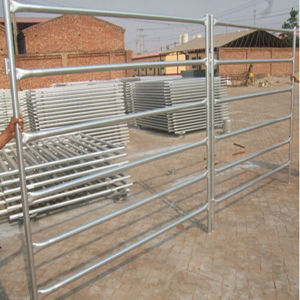 Cheap Galvanized Cattle Panels for Sale pictures & photos