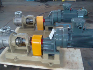 Nyp Stainless Steel Rotor Pump
