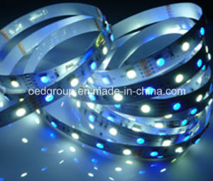 SMD5050 RGB+White 60LEDs/M LED Flexible Stripe IP68 Light for Indoors Decoration pictures & photos